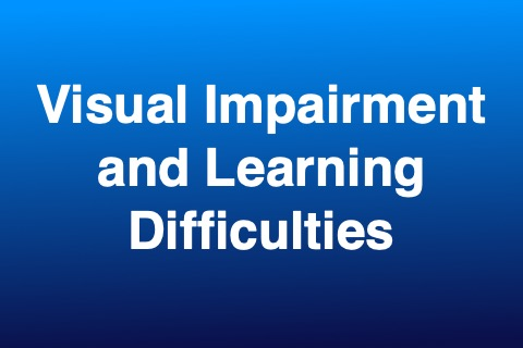 Visual Impairment and Learning Difficulties
