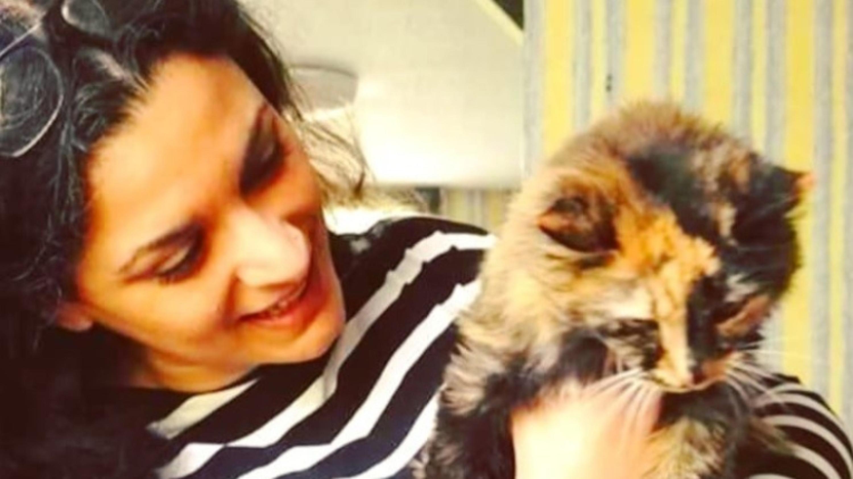 Croydon Cat Sitter