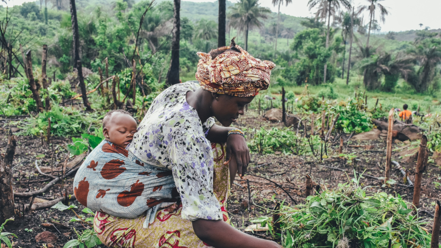 African Agriculture's Untapped Potential: An Opportunity for Impactful Lending