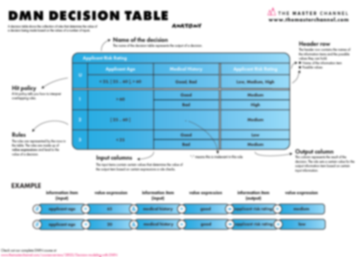 DMN Decision Table Anatomy Blurred Poster