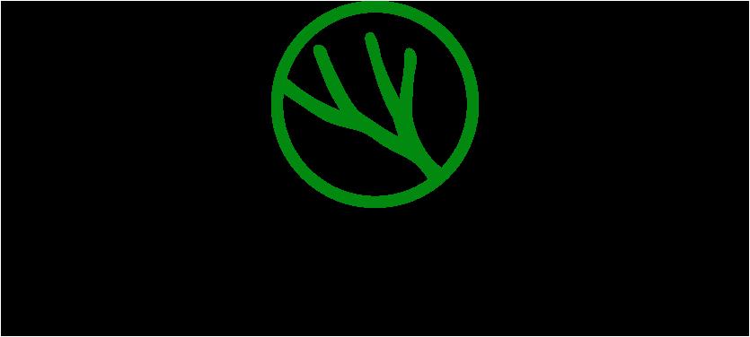 Pine Venture Partners