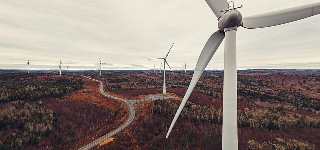 windmolens belgie