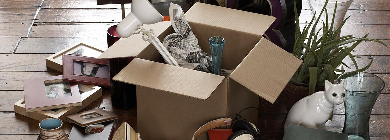 Moving home box
