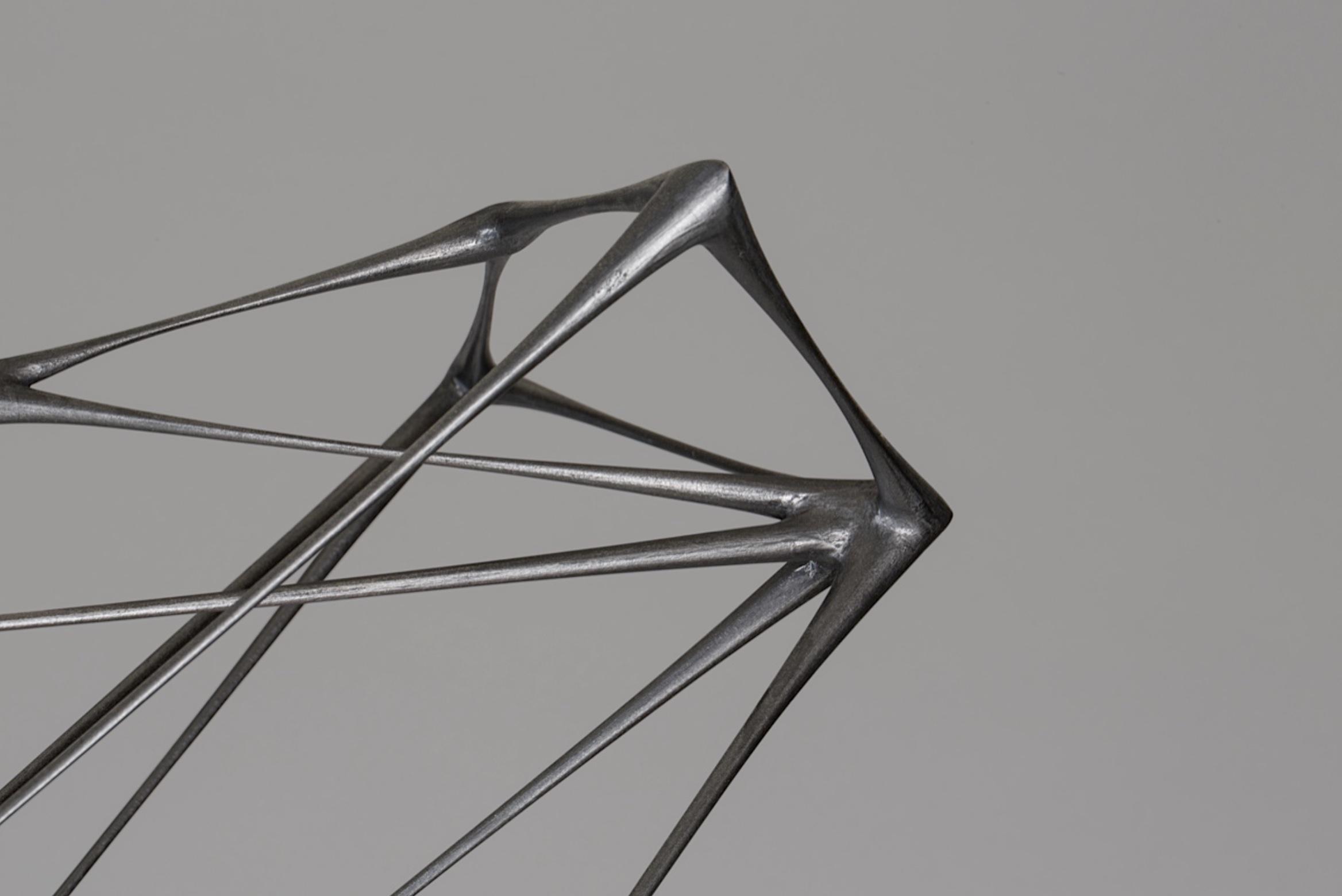 Detail of Black Kite by artist Christopher Kurtz
