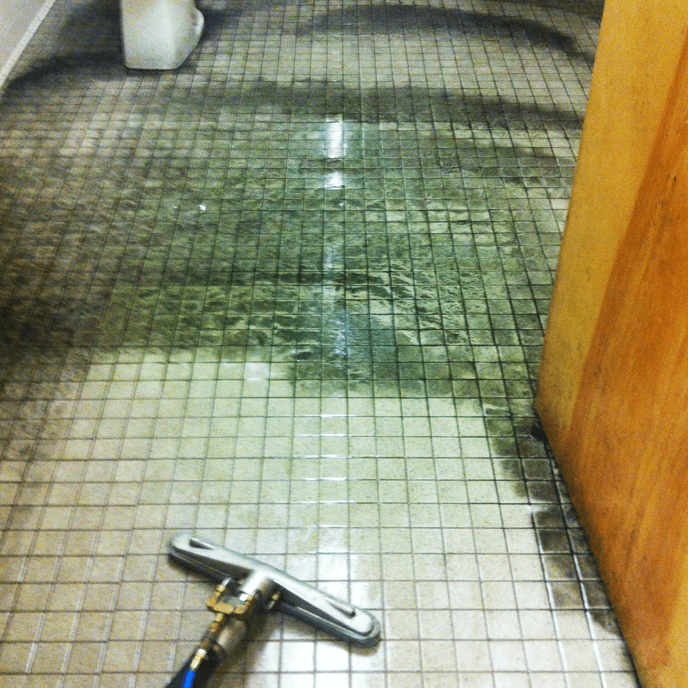 Tile & grout cleaning example