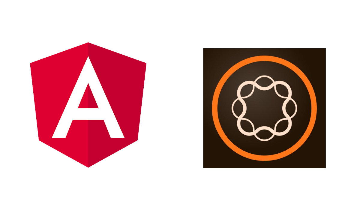 Angular 6+ inside Adobe Experience Manager