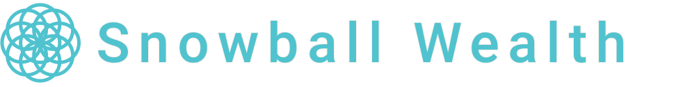 turquoise snowball logo