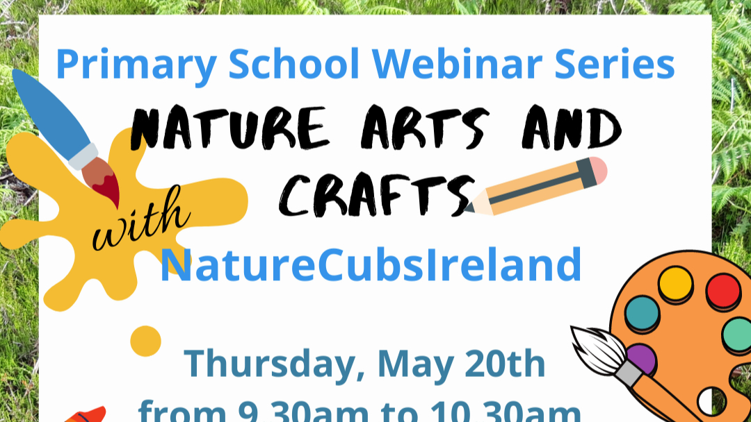 Nature Arts and Crafts