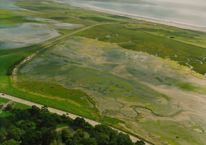 North Bull Island Feature