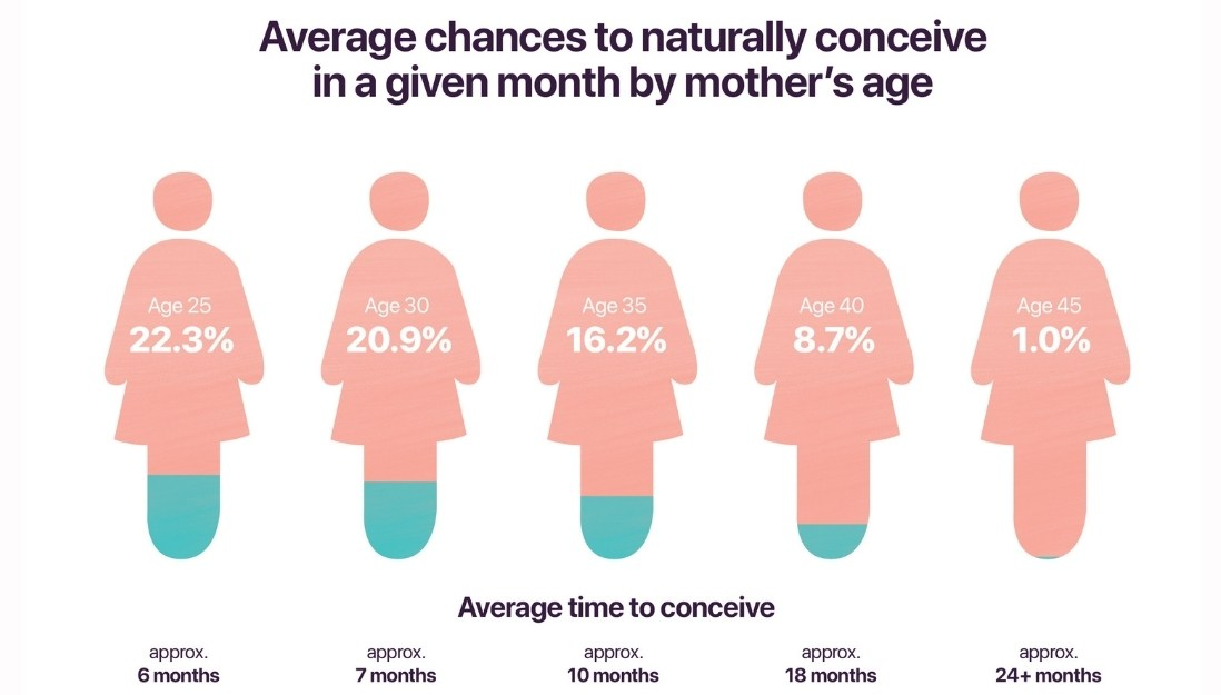 chances to get pregnant in percentages by age