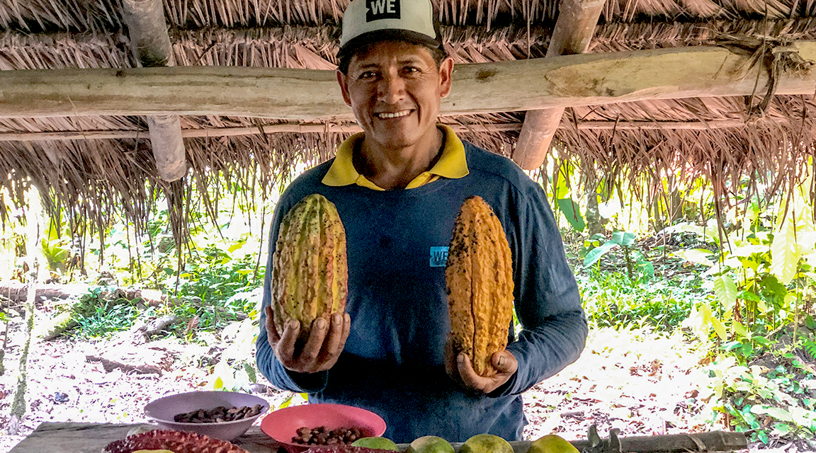 Local Ecuadorian cacao farmer holding cacao fruit under a hut