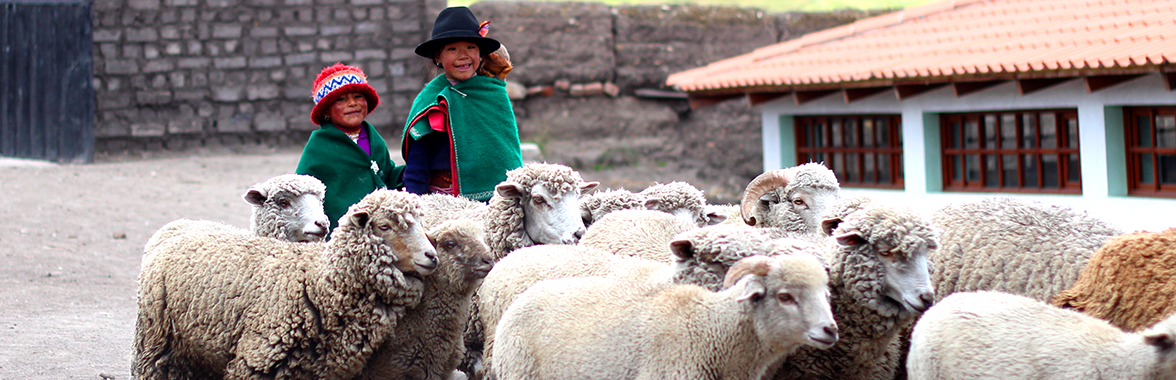 Two local children in traditional clothing herding sheep