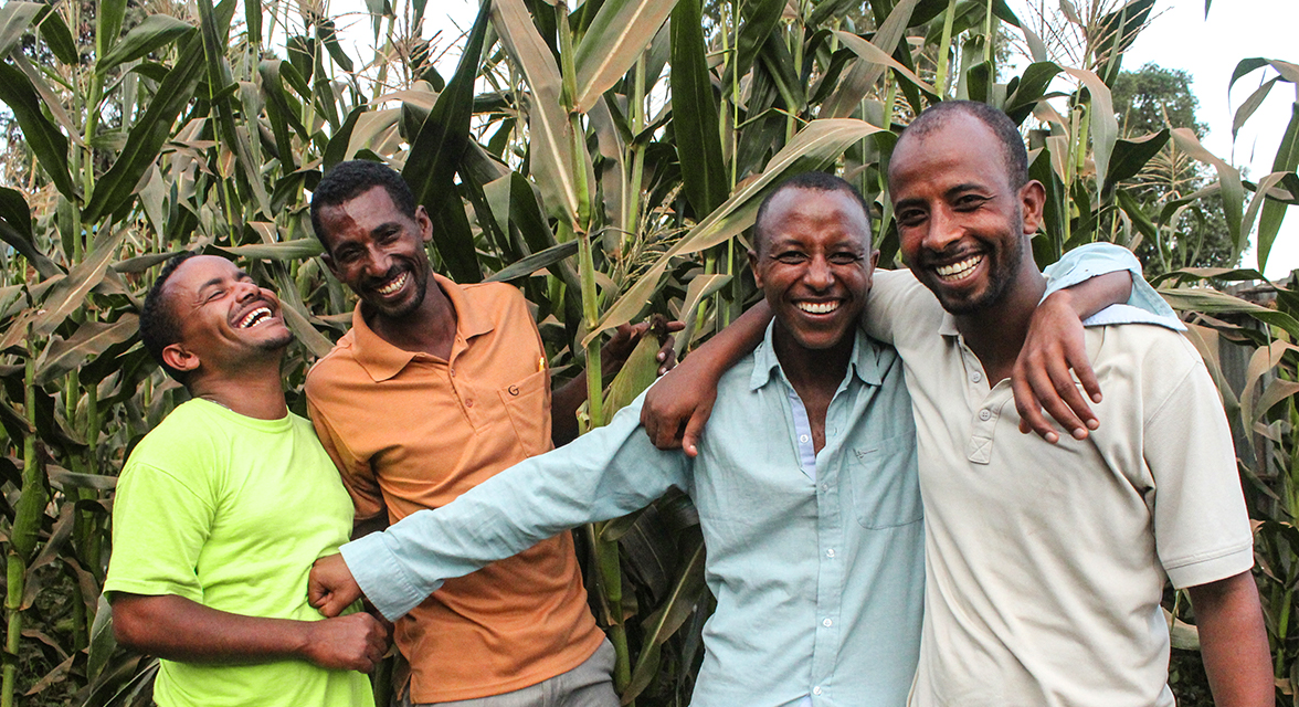 Local Kenyan men laughing and posing for a picture by tall corn crops