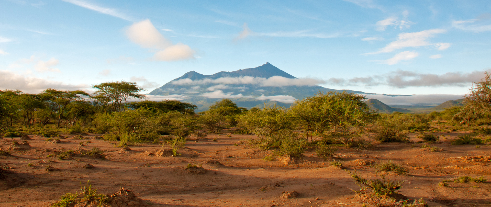 Savanna with shadow of Mount Kilimanjaro in the background