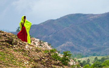 Local women in traditional clothing harvesting in India