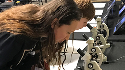 Students look through microscopes.