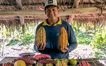 Cacao farmer in Ecuador