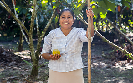 Local cacao farmer holding a cacao fruit outside in a field