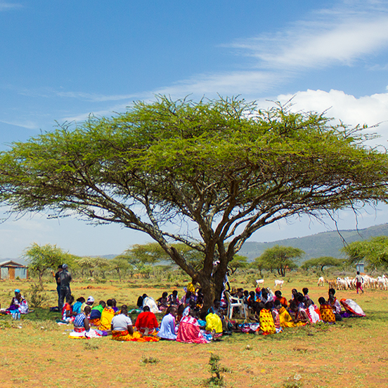 Locals sitting under acacia tree in savanna in Kenya