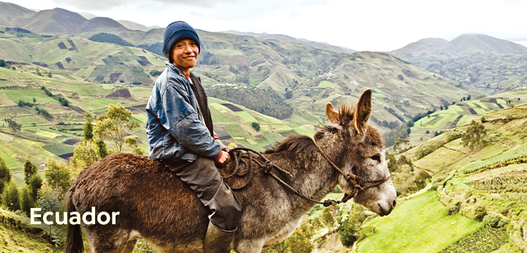 Young Ecuadorian boy riding a donkey across grassy hills