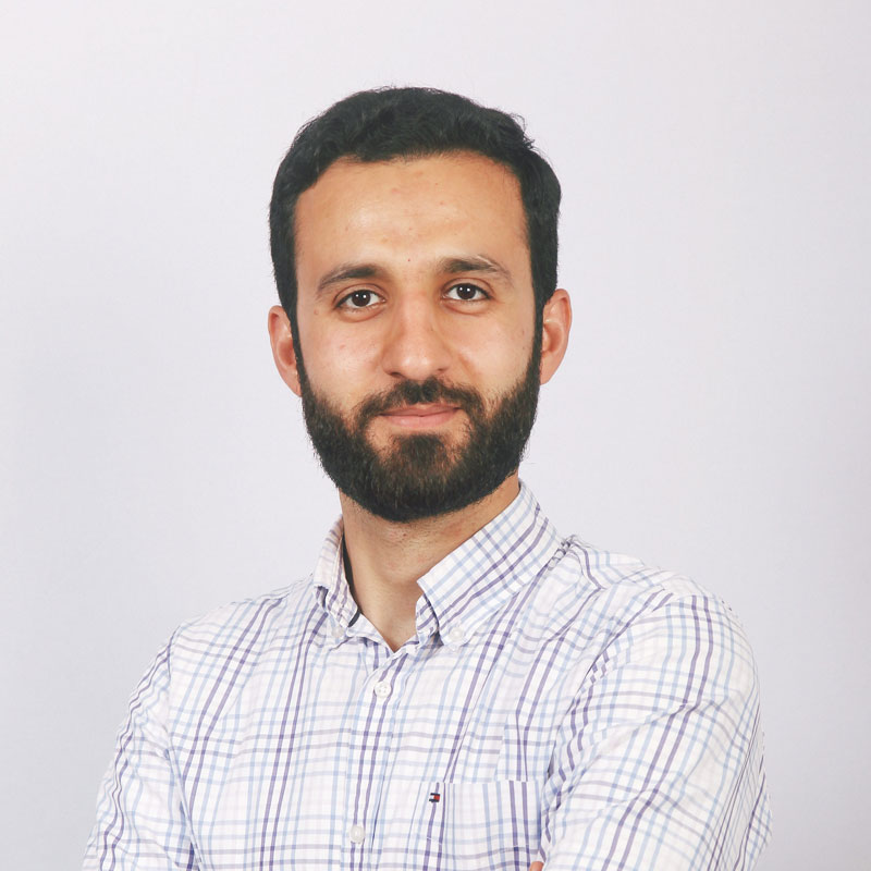 Mohsen, Business Intelligence Analyst