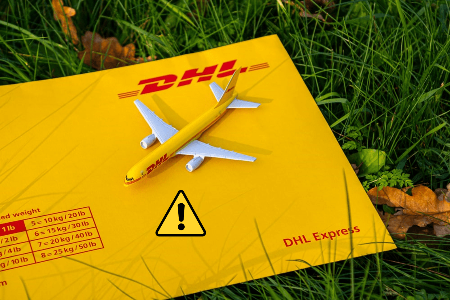 You've Got A Phish Package: FedEx and DHL Express Phishing Attacks