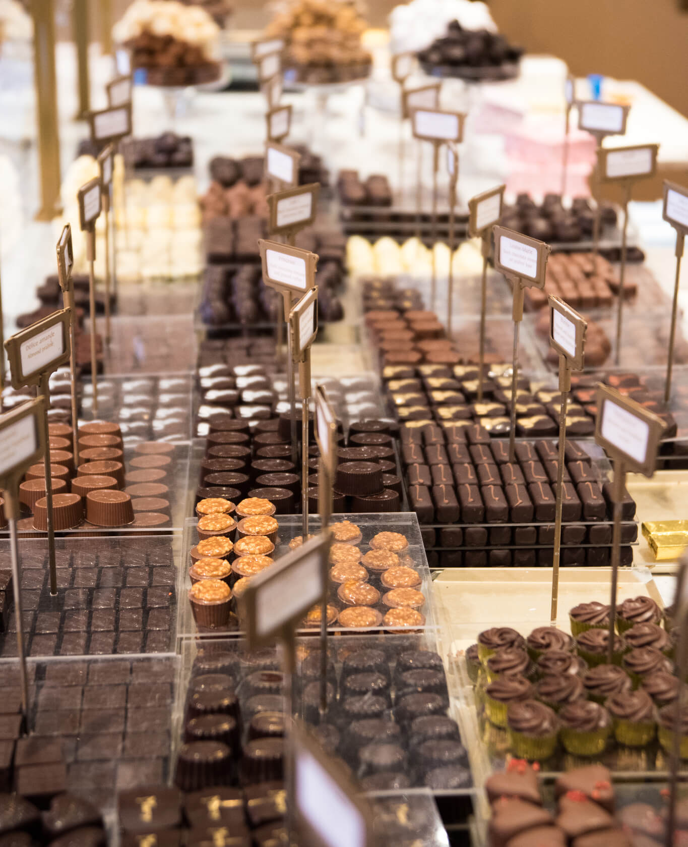 chocolates on display at a shop