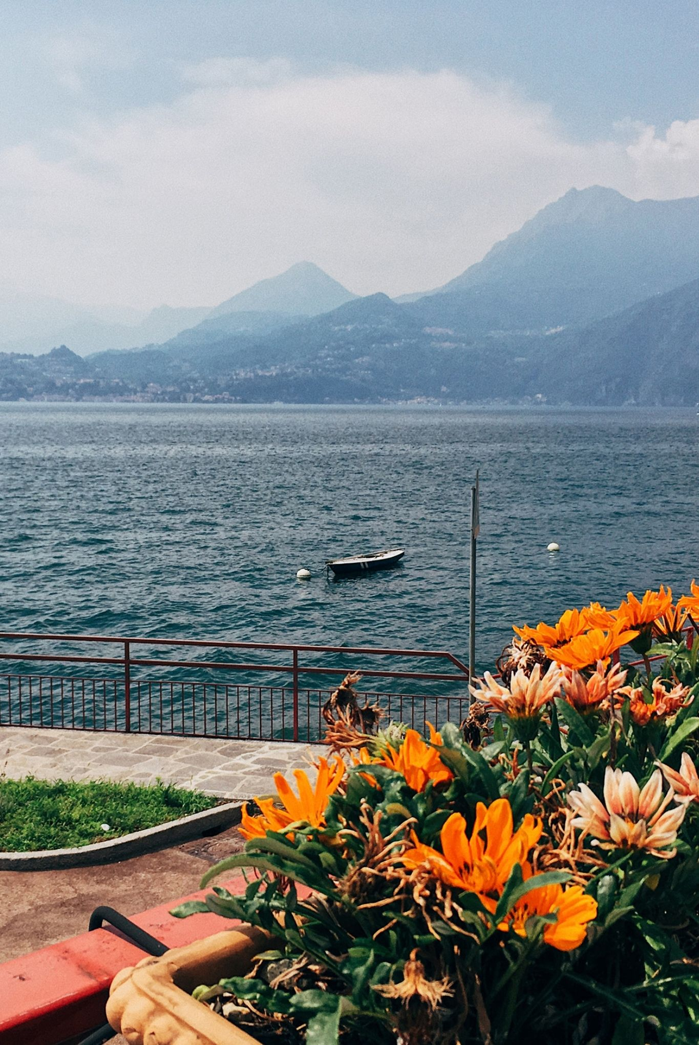 orange flowers in terrace basket near shore of lake como in italy