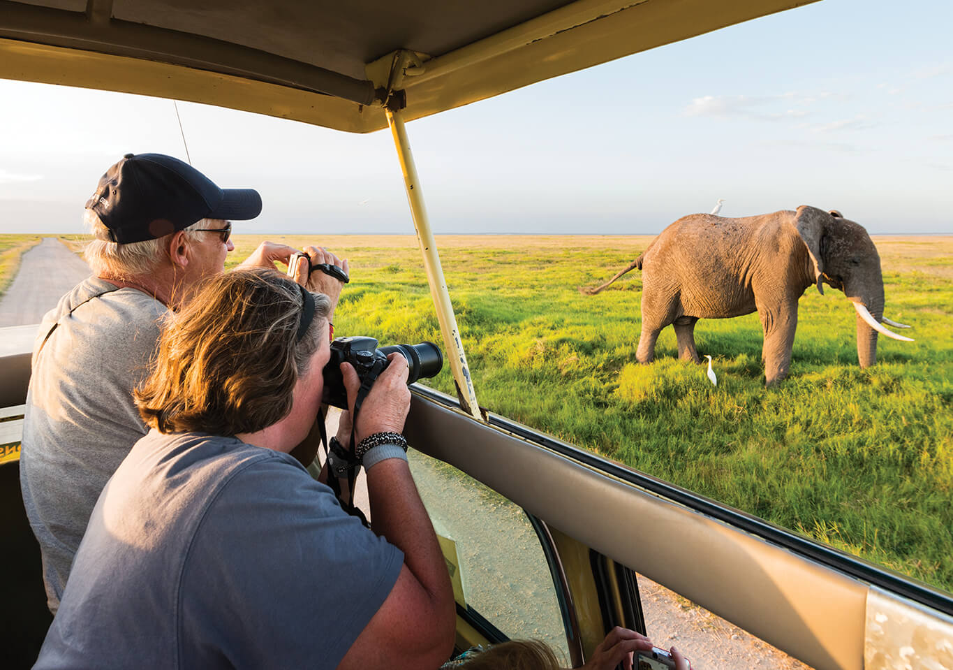 couple sitting in a safari jeep taking a photo of an elephant in africa