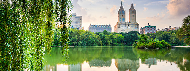pond surrounded by lush green trees in the upper west side in new york