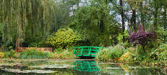bright green bridge over pond surrounded by lush green trees