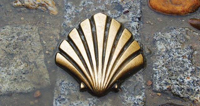 close up of gold sea shell marker on the way of saint james path
