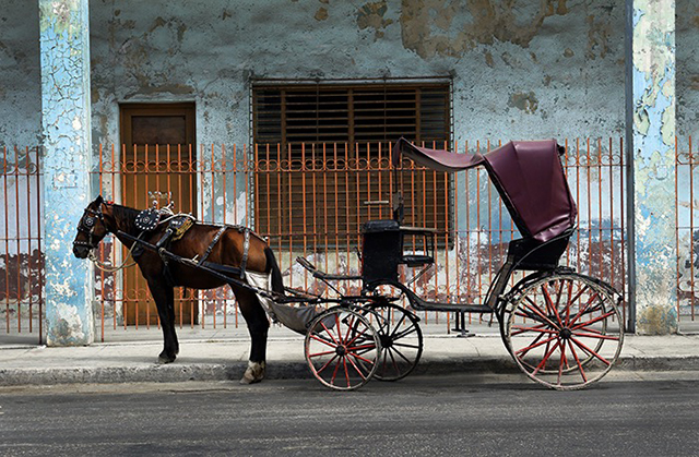 horse pulling carriage on streets of cuba