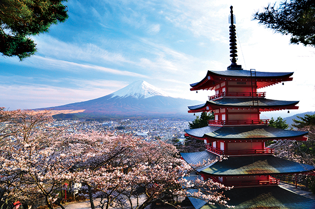 Japan's Cherry Blossoms | EF Go Ahead Tours