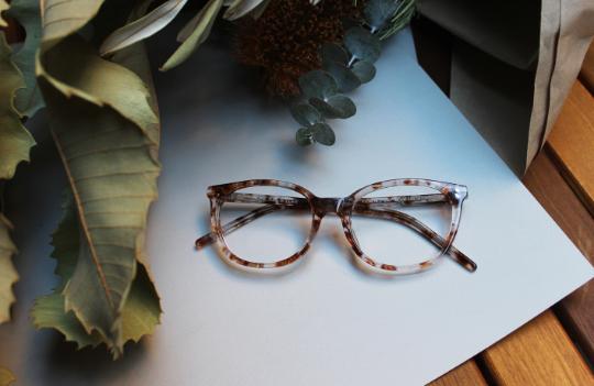 Gouldian and Zebra Finch inspired frames