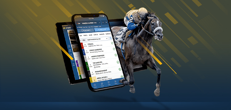 Free tvg horse betting sports betting point spread
