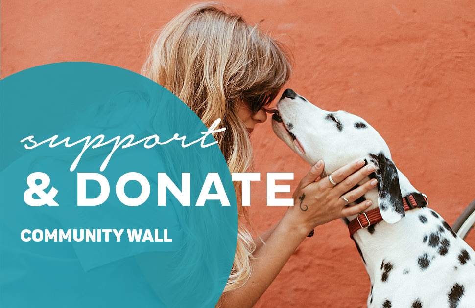 Community Wall - RSPCA
