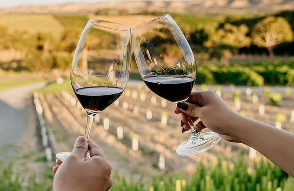 McLaren Vale Winery Day Tours