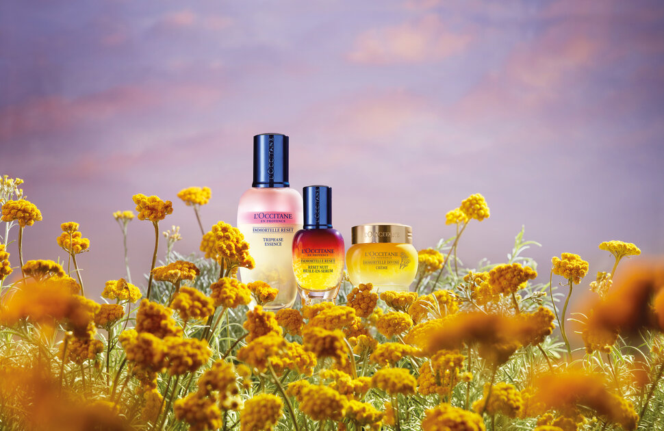 Your Exclusive Gift From L'OCCITANE