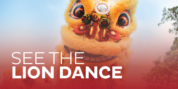 See The Lion Dancing