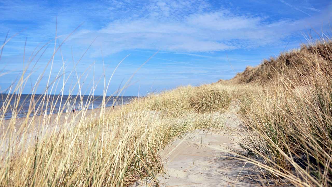 La plage du Perroquet (Bray-Dunes)
