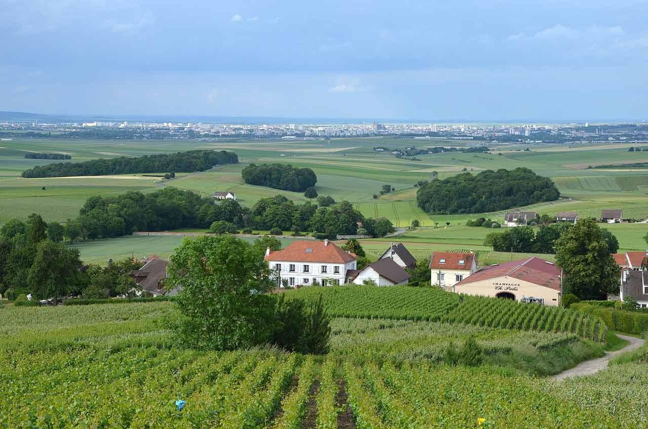Montagne de Reims