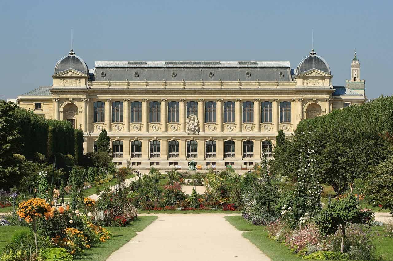 Le Muséum national d'Histoire Naturelle et le Jardin des Plantes