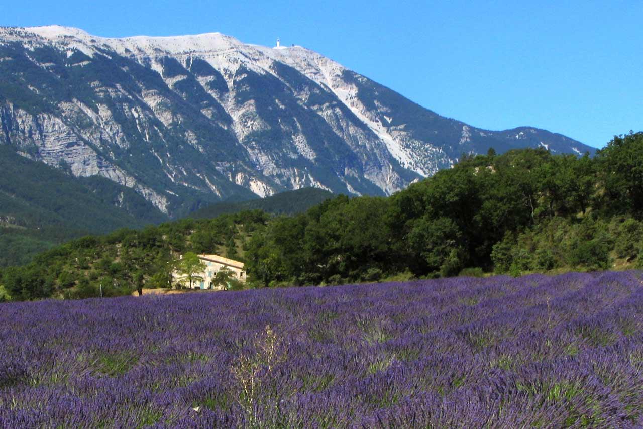 Les villages de Provence et les champs de lavande