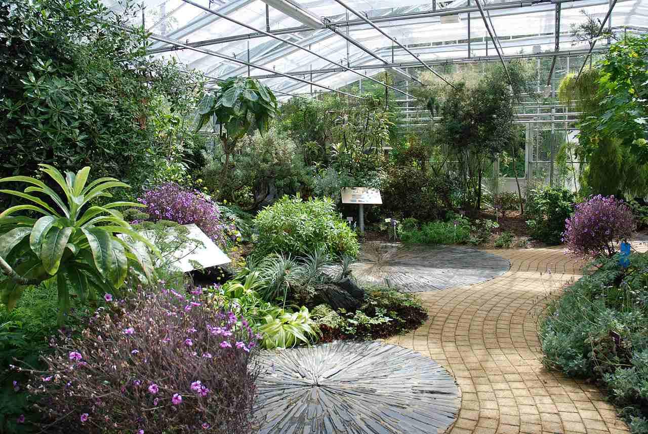 Le Jardin du Conservatoire botanique national