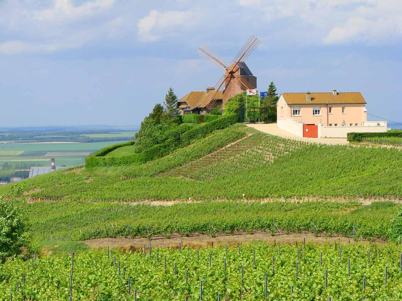 La route des vins de Champagne
