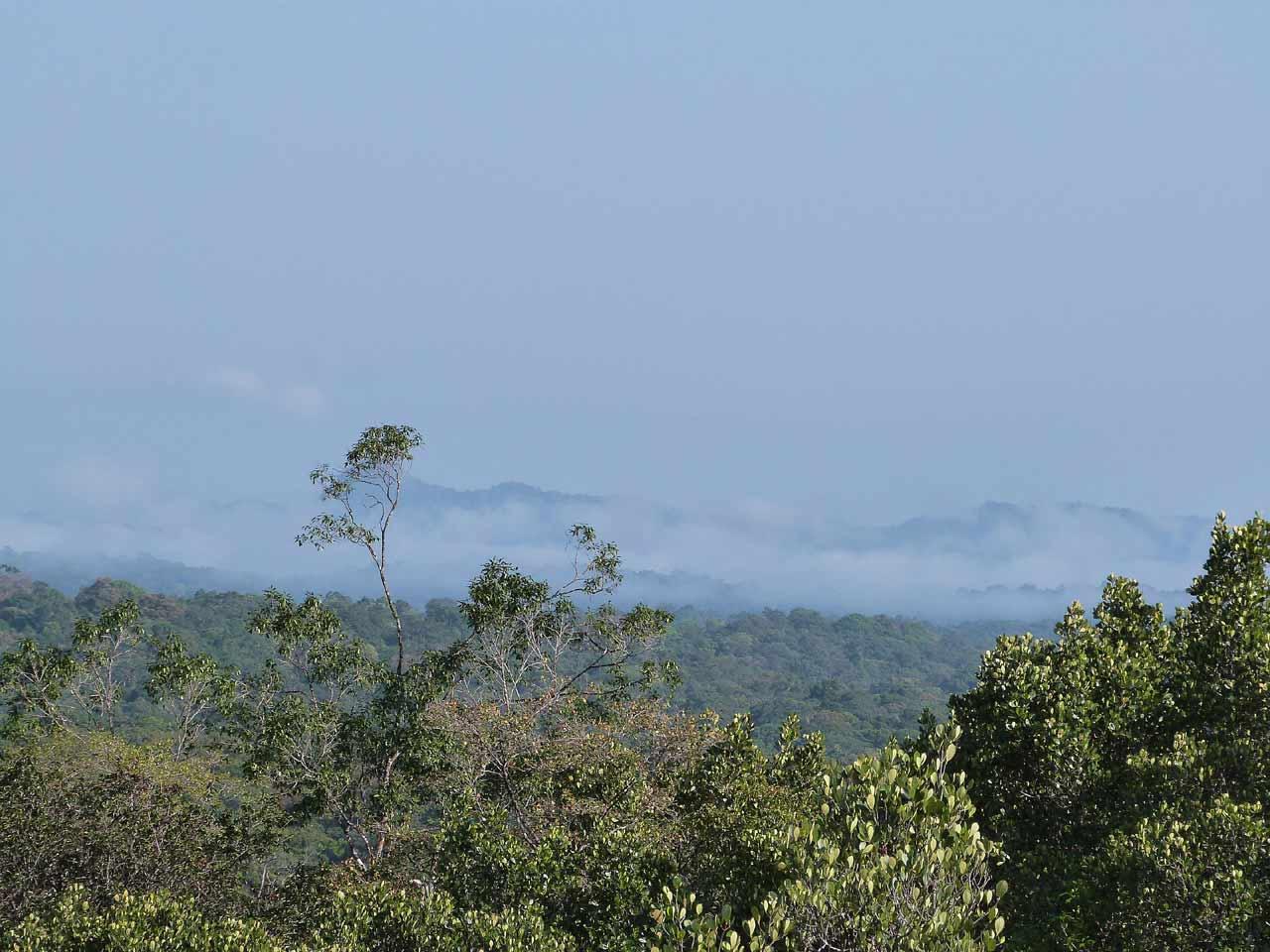 Parc amazonien de Guyane