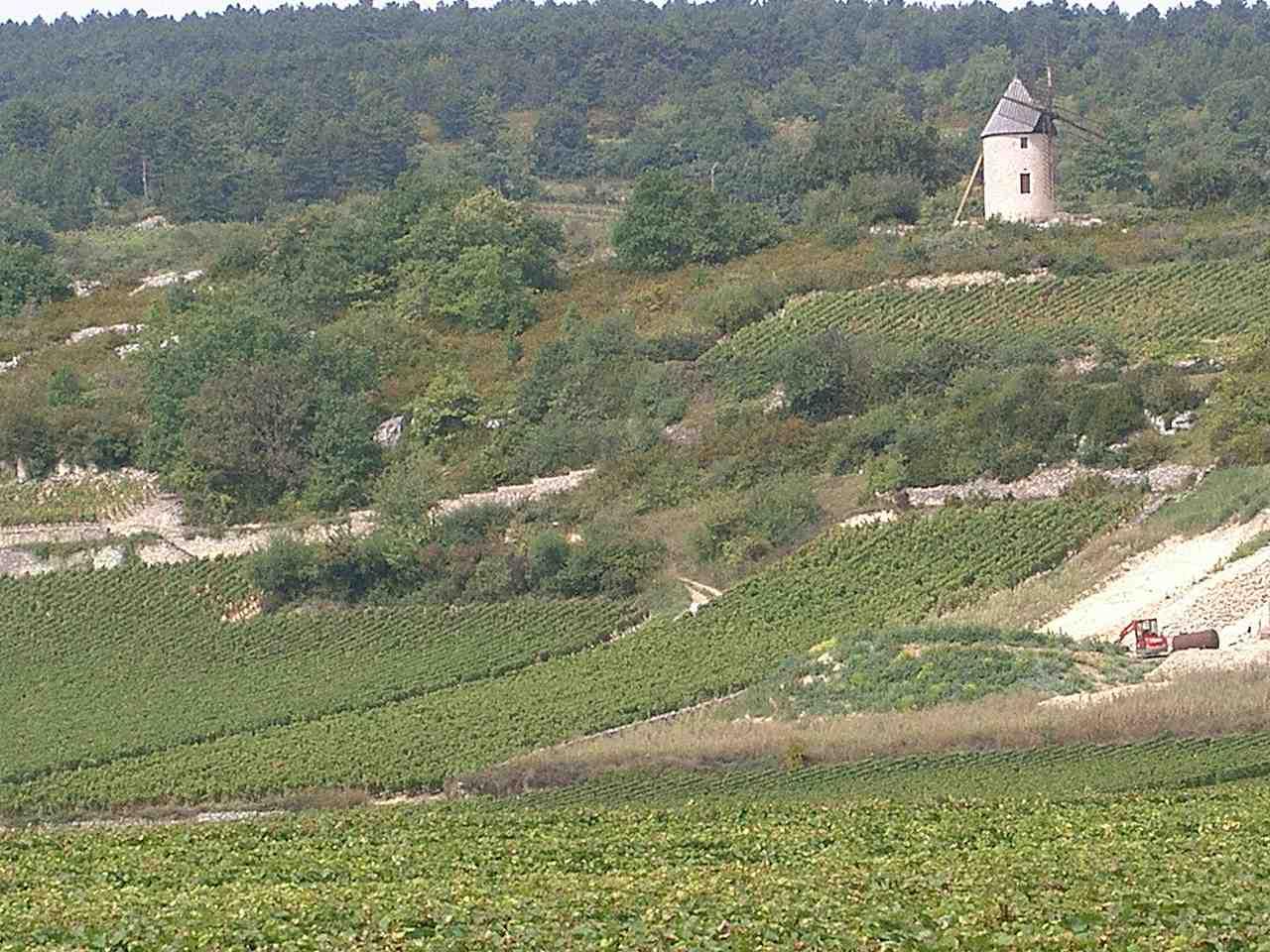 Les vignobles du Santenay