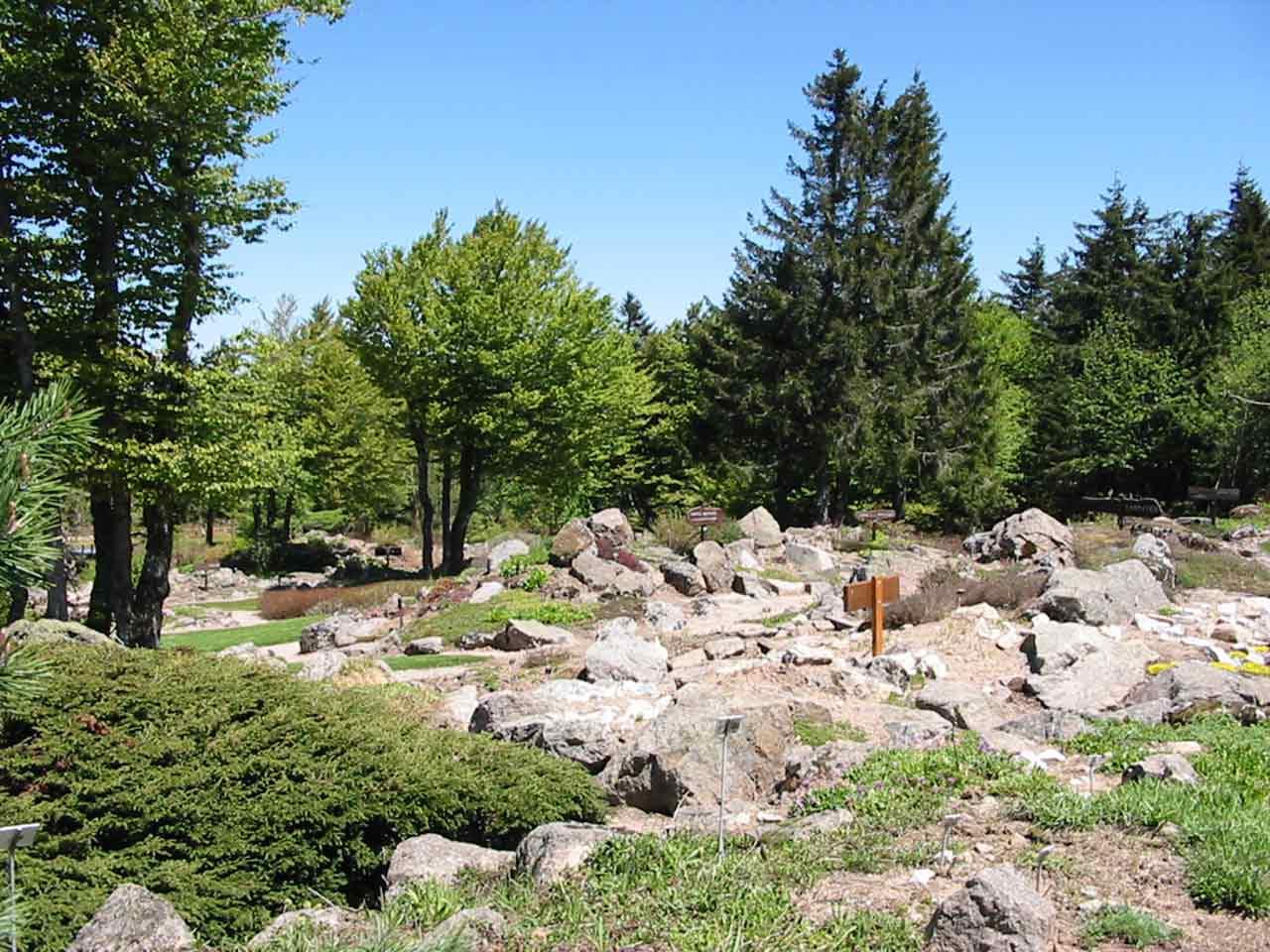 Jardin d'altitude du Haut-Chitelet