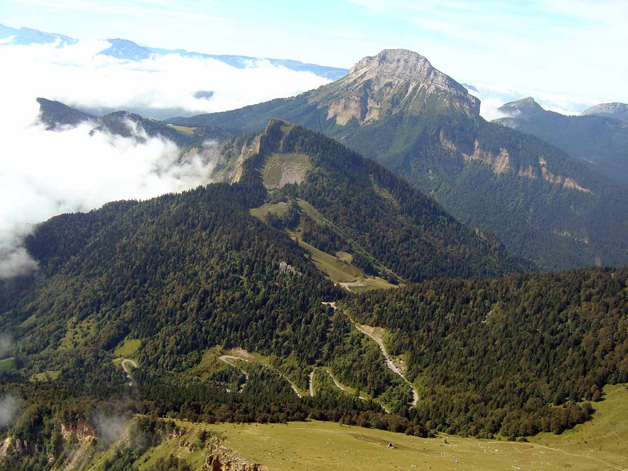 La forêt de la Grande Chartreuse, Auvergne-Rhône-Alpes